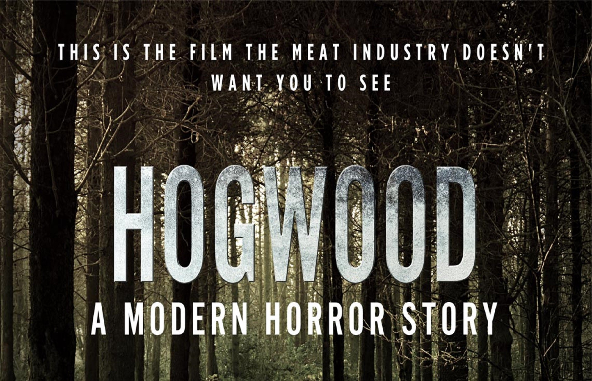 Hogwood: A Modern Horror Story